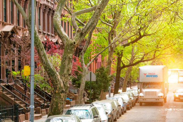 Paula's Movers - Your Boutique Brooklyn Based Brownstone Moving Specialists.